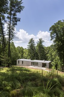 "A Cypress-Clad Lake House Posted Up on an Old Logging Road - Photo 2 of 4 - The simple bar-shaped house is buried into the hillside, which allows for unobstructed views of the woods below.<span> <a href=""/discover/dwelllpow"">#dwelllpow</a></span>"