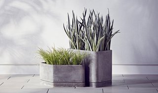 Modern by Dwell Magazine Hexagonal Concrete Planter