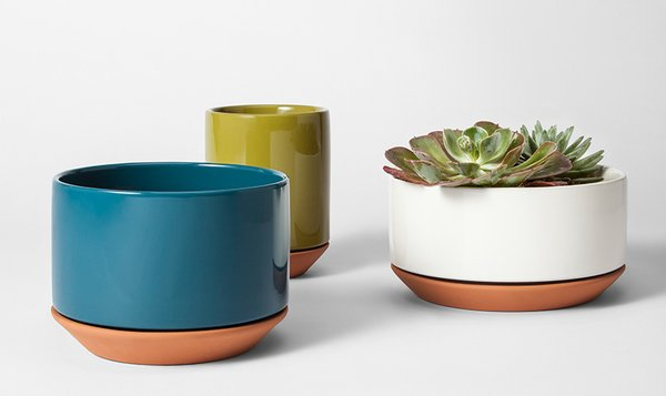 Modern by Dwell Magazine Terracotta Planter