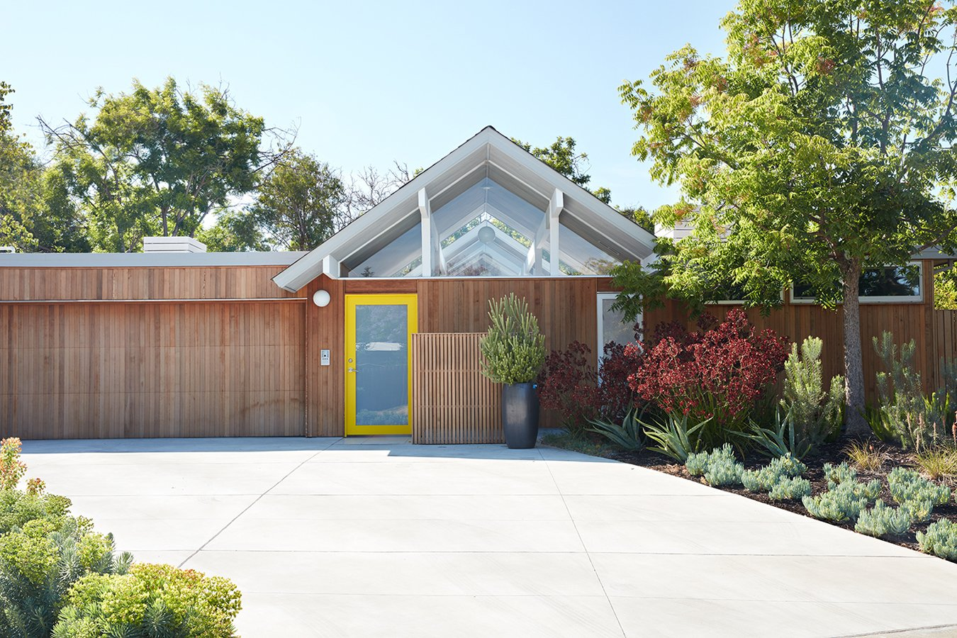 Tagged: Outdoor, Front Yard, Trees, Shrubs, and Concrete Patio, Porch, Deck.  Photo 1 of 10 in Same Bones, New Materials—A Double Gable Eichler Gets a Dashing Update