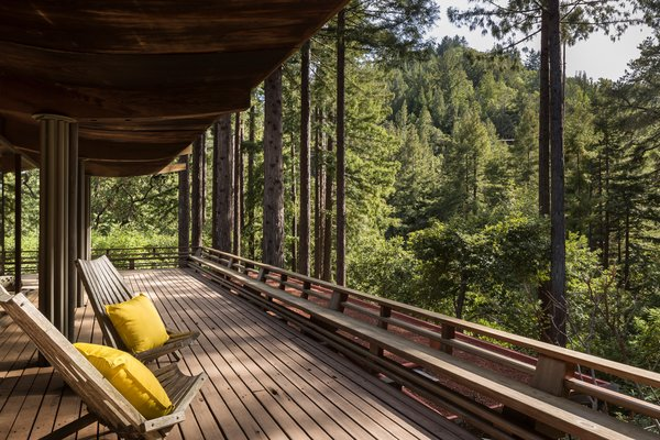 """The house sits on 1.25 acres of land and has a deck that connects the interiors with the outdoors. Jay pointed out, """"Some of the old-growth redwood Liebermann used has up to 25 growth rings in a single inch!"""""""