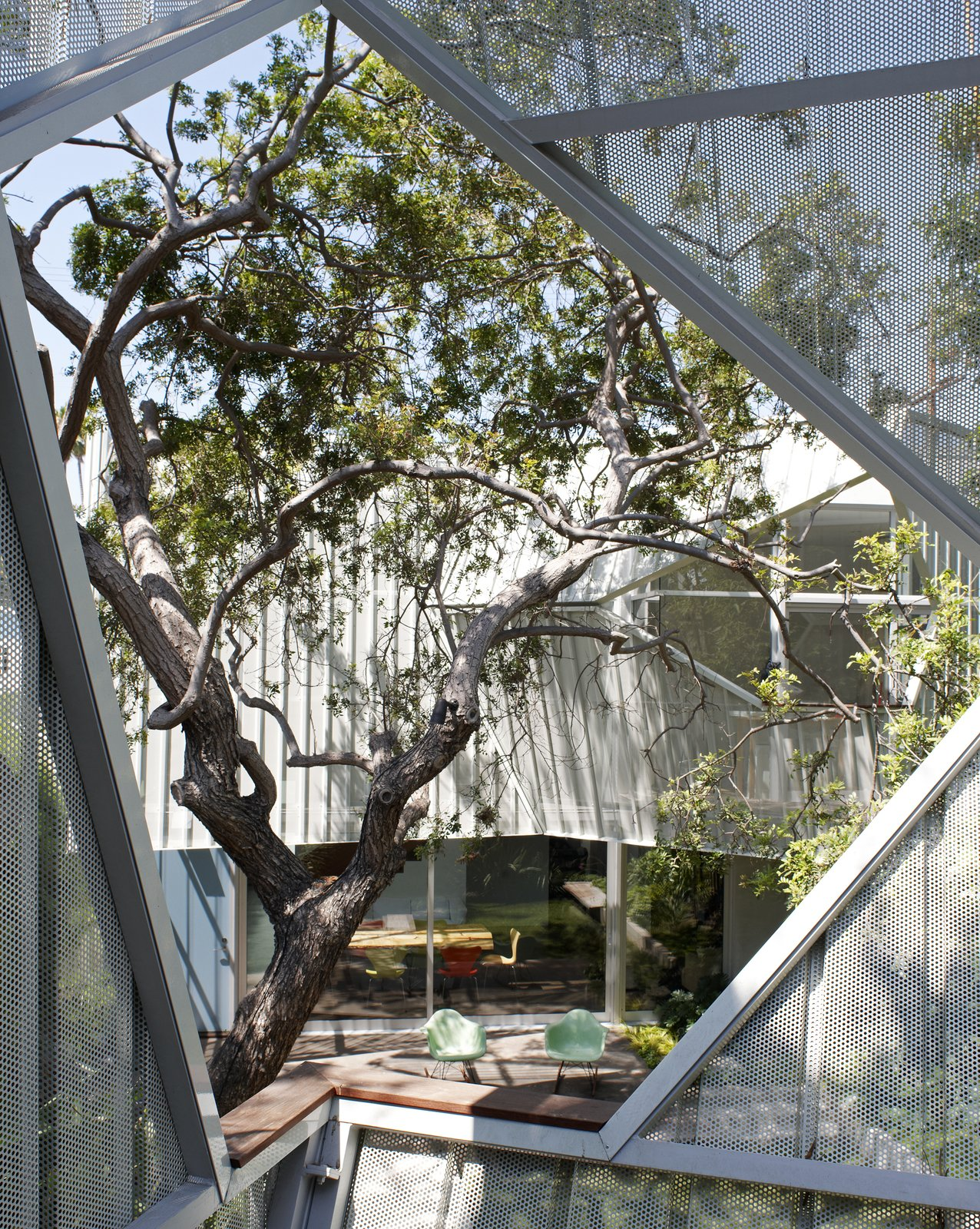 Photo 6 of 10 in A Perforated Screen Brings Privacy and Natural Light to This Bold Venice Home