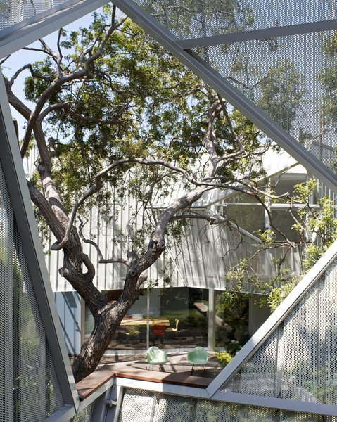 A Perforated Screen Brings Privacy and Natural Light to This Bold Venice Home - Photo 5 of 9 -