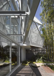 A Perforated Screen Brings Privacy and Natural Light to This Bold Venice Home - Photo 6 of 9 -