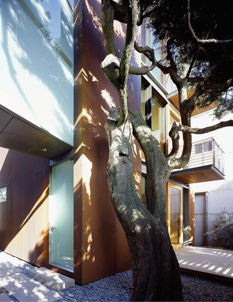 Photo 4 of Ocean Beach Residence modern home