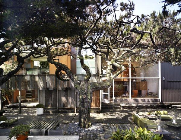 Photo 6 of Ocean Beach Residence modern home