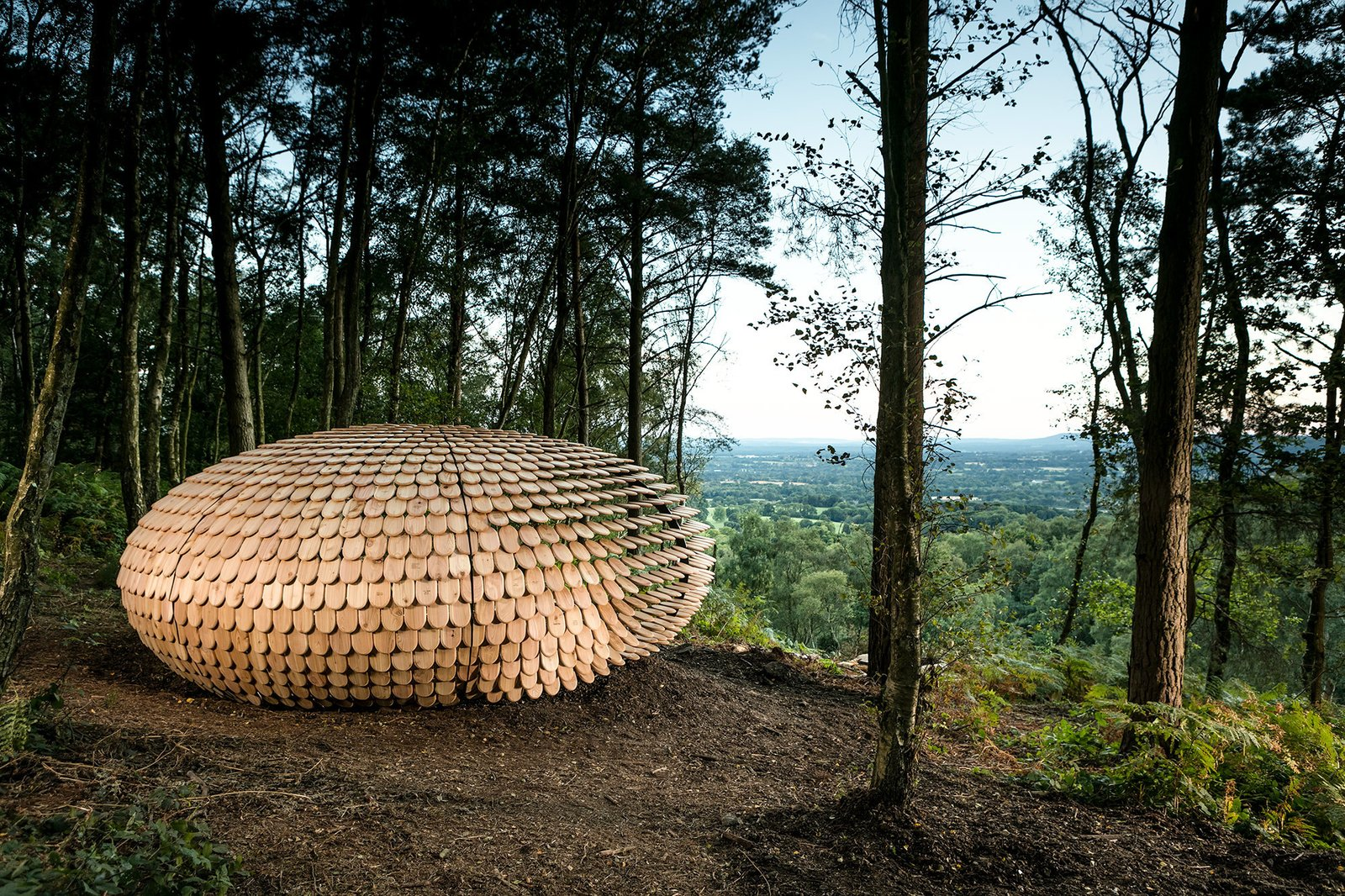 Photo 1 of 5 in An Organic Cedar Wood Pavilion Filled With Meaning