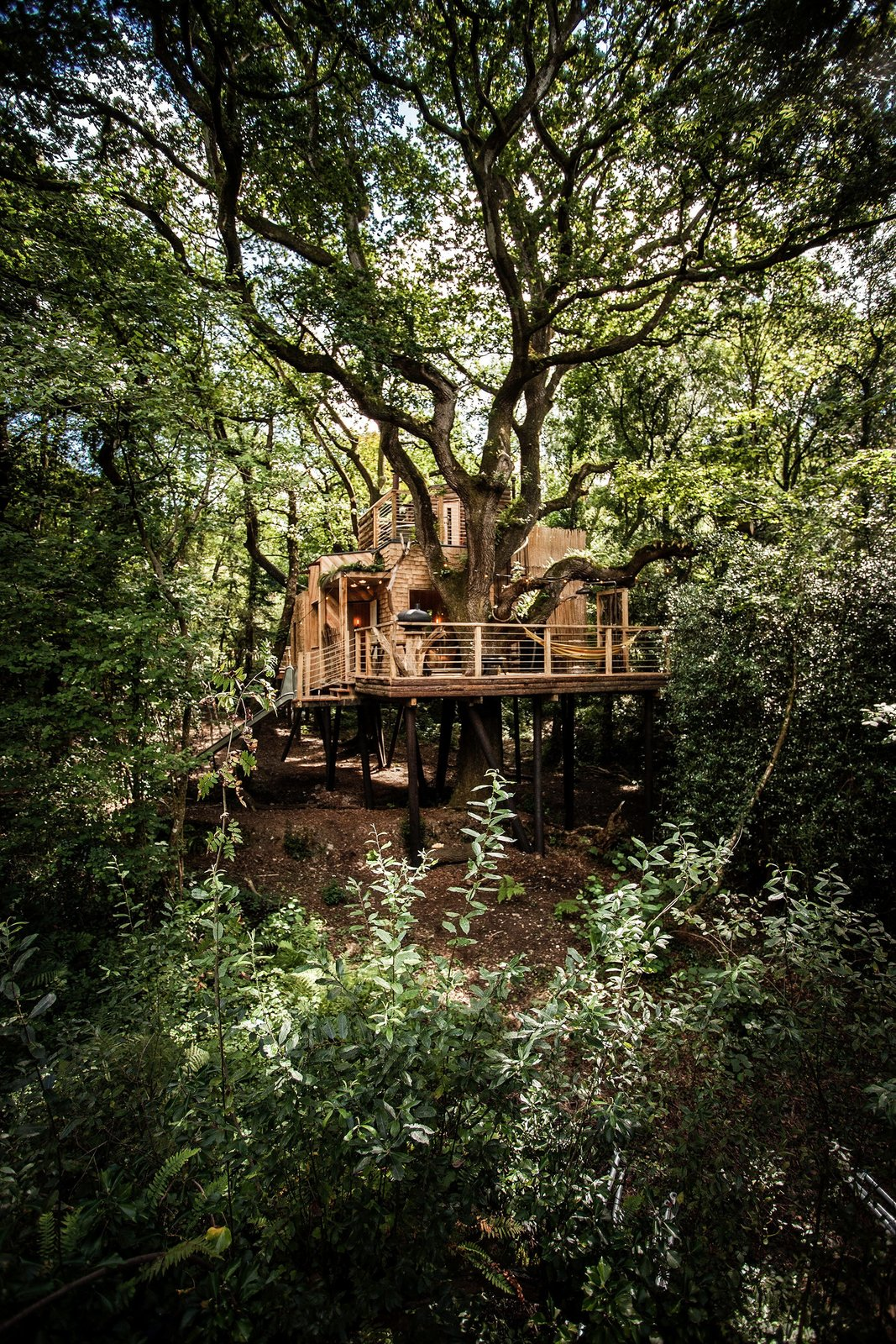 Woodman's Tree House is built using local materials where possible and includes traditional wooden craftsmanship throughout the interior. The structure stands on high stilts to minimize its effect on the land and all the existing trees are protected and maintained unharmed and untouched.  Photo 6 of 6 in The Woodman's Treehouse