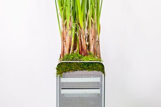 Plant Your Mac! By Monsieur Plant - Photo 2 of 7 -