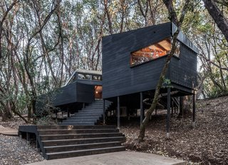 Forest House By Envelope A + D - Photo 1 of 7 -