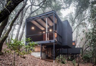 Forest House By Envelope A + D - Photo 2 of 7 -
