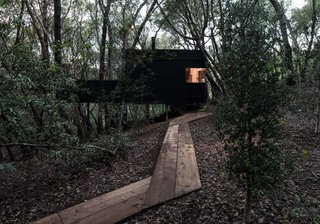 Forest House By Envelope A + D - Photo 6 of 7 -