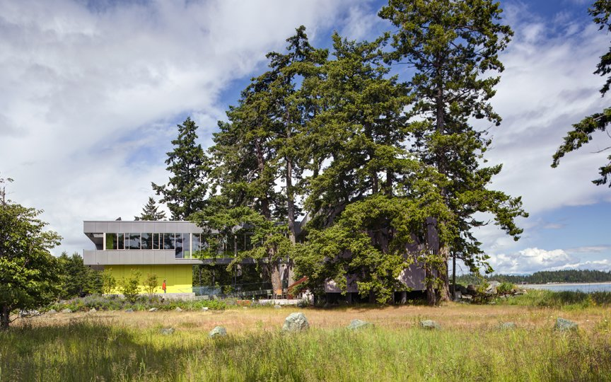 Preserving these majestic trees and pristine coast became a departure point for the siting strategy and formal language of the house and landscape. The main house is clad in the local Douglas fir with deep protective eaves. In contrast, the elevated guest house in mineral in nature poetically connected to the land.   #beachhouse #nature #trees #douglasfir #siting #preservation #landscape #residentialarchitecture #residential #interstice #intersticearchitects #comox #britishcolumbia #vancouverislands #bradlaughton #bradlaughtonphotography   TreeHugger by INTERSTICE Architects