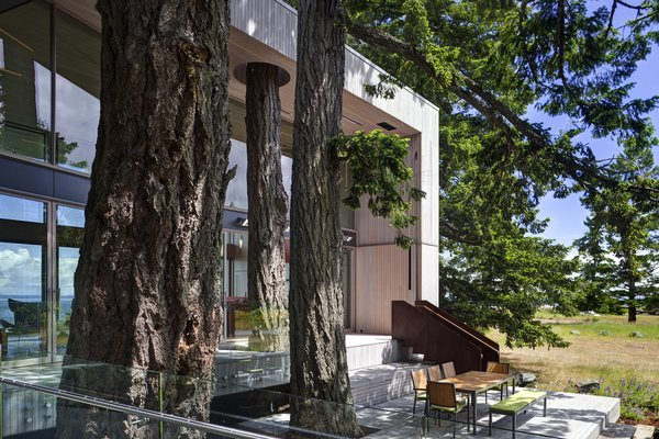 We selected the site with the client for its 400 year-old Douglas firs and its proximity to the rugged coastline. The client was seduced with the idea of saving the trees  -and build his home amongst the giants, while protecting and restoring the native coastline.  #beachhouses #beachhouse #interstice #intersticearchitects #bradlaughton #bradlaughtonphotography #britishcolumbia #vancouverisland #trees #douglasfirs #nature #ecology #cortensteel #exterior #architecture #residential #residentialarchitecture  Photo 4 of TreeHugger modern home