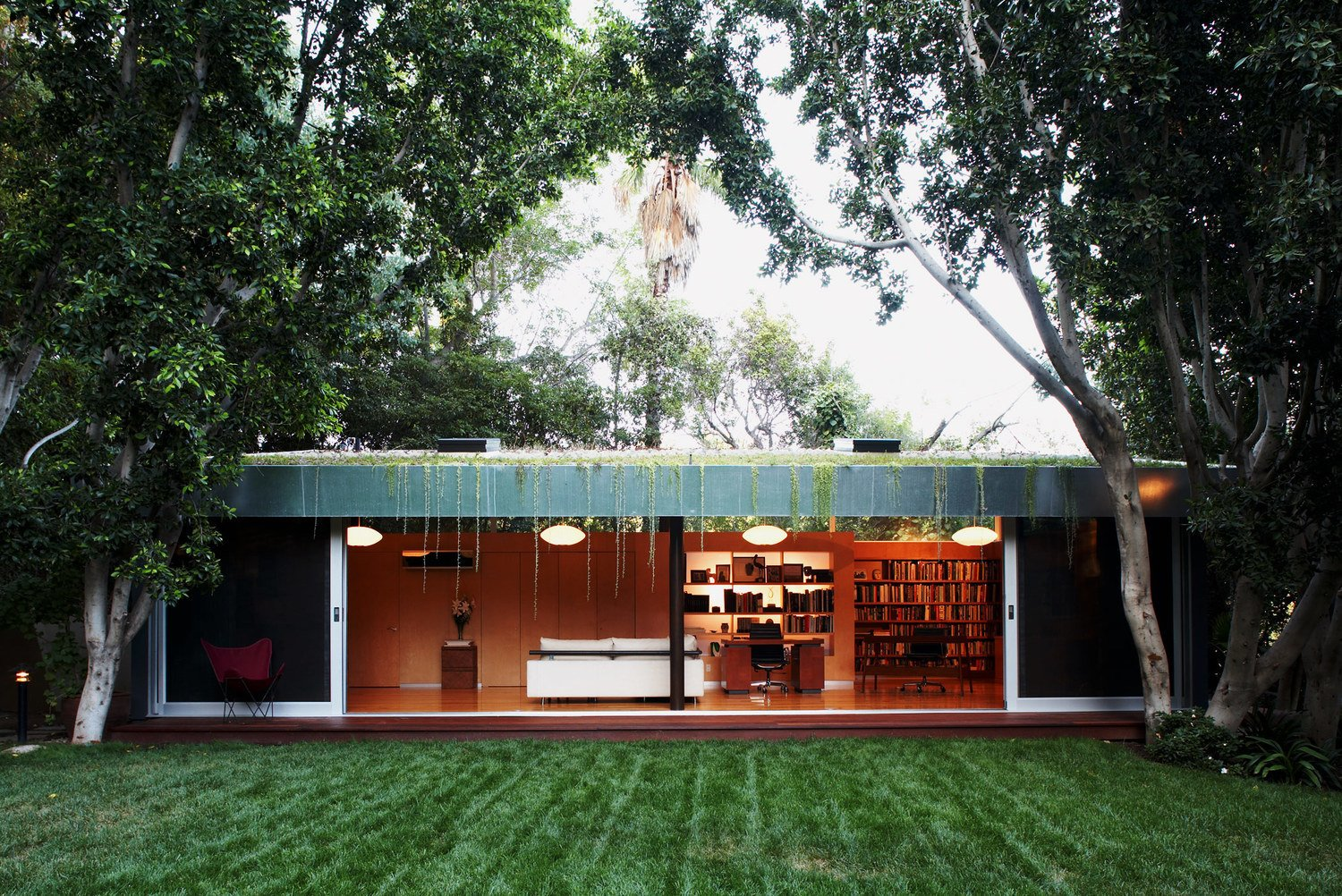 #LushHouse #modern #midcentury #hillside #seclusion #lighting #exterior #outside #landscape #plants #trees #interior #furniture #booskshelves #detail #BeverlyHills #KingsleyStephensonArchitecture  Lush House by Kingsley Stephenson Architecture