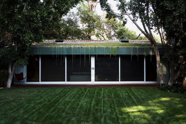 #LushHouse #modern #midcentury #hillside #seclusion #lighting #exterior #outside #landscape #plants #trees #detail #BeverlyHills #KingsleyStephensonArchitecture