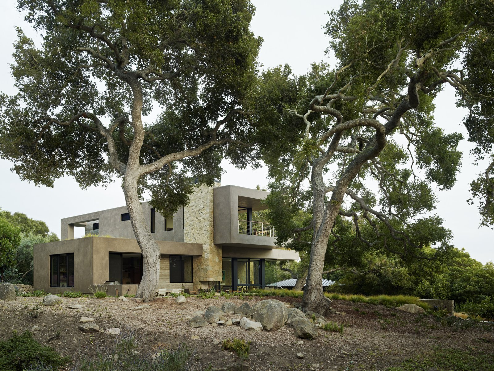 Tagged: Outdoor, Back Yard, Woodland, and Trees. Lilac Drive by Marmol Radziner