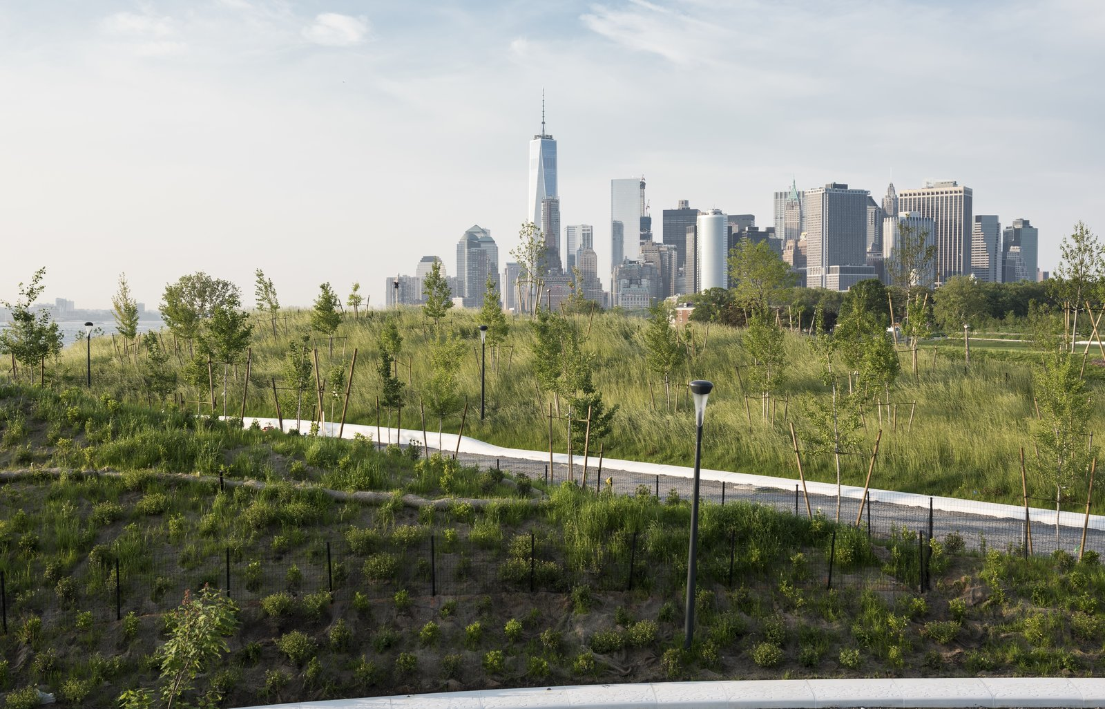 The planting plan was designed to provide viewing corridors toward the city, with visitors enjoying 360-degree vistas from the top of the tallest hill. Some 830 trees from 32 species selected for their size, color, and heartiness—including a variety of oaks and sassafras—were planted on The Hills, with a mix of balled-and-burlapped and container techniques.