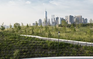 New York's Newest Park Sits on Recycled Demolition Debris - Photo 2 of 5 - The planting plan was designed to provide viewing corridors toward the city, with visitors enjoying 360-degree vistas from the top of Outlook, the tallest hill, and scenes of the Financial District skyline from Grassy Hill, seen here. Some 830 trees from 32 species selected for their size, color, and heartiness—including a variety of oaks and sassafras—were planted on The Hills, with a mix of balled-and-burlapped and container techniques.
