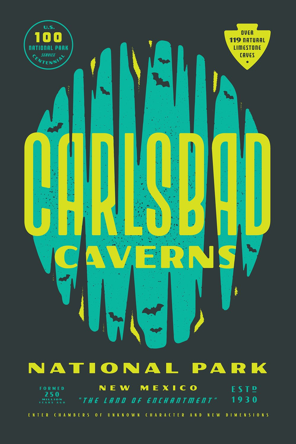 Carlsbad Caverns National Park designed by Lauren Dickens  With Type Hike, 59 Graphic Designers Celebrate the National Park Service Centennial by Heather Corcoran