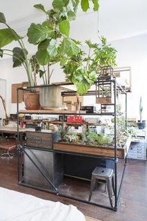 Huy Bui's Brooklyn Loft Is Like a Self-Contained Jungle - Photo 3 of 4 - Terrariums from Bui's own company Plant-in City occupy the corner of the L-shaped apartment, providing privacy for his sleeping nook.