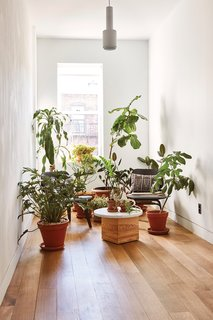 Forever Changes - Photo 5 of 16 - On the second-floor landing, an Alvar Aalto A110 pendant light from Artek hangs above an improvised green space.
