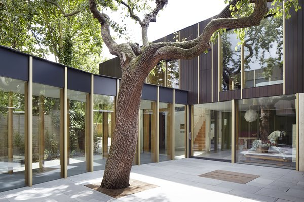"""This Modern Courtyard Home Celebrates a 100-Year-Old Tree - Photo 1 of 8 - """"I believe that the beauty is in the execution. Beautiful things can be made from humble materials with thought and care,"""" says architect Jake Edgley."""