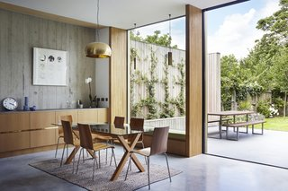 This Modern Courtyard Home Celebrates a 100-Year-Old Tree - Photo 6 of 8 - The dining room table is from Habitat. The oak veneered plywood is by Peter Benson Plywood.