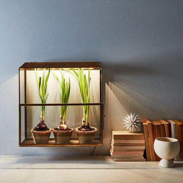 Brass Grow-Anywhere Growhouse