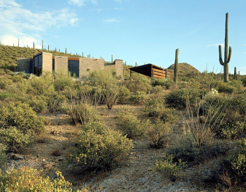 #modern #garciaresidence #ibarrarosanodesignarchitects #architecture #landscape #exterior #arizona #backyard #outdoor #cactus