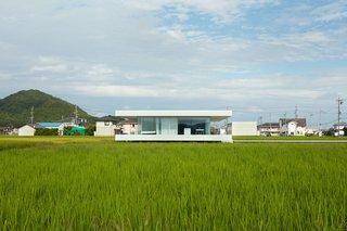 F Residence by Shinichi Ogawa & Associates - Photo 7 of 11 -