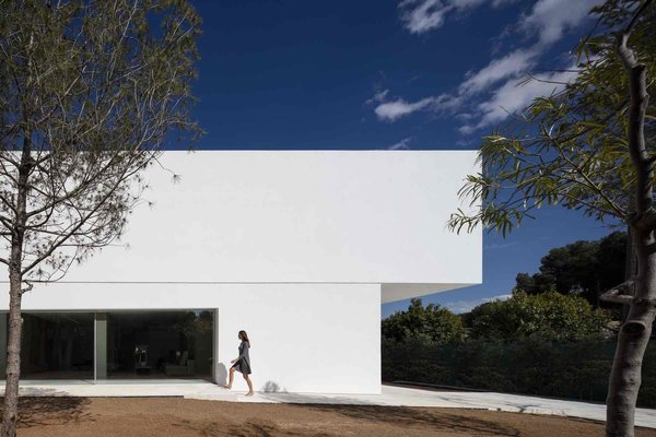Photo 5 of House Between the Pine Forest modern home