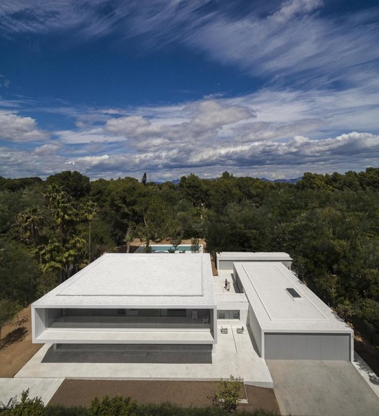 Photo 8 of House Between the Pine Forest modern home