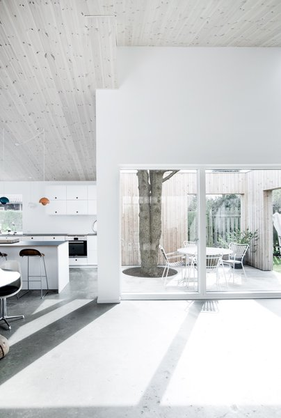 Modern home with kitchen and concrete floor. Photo 2 of The Roof House