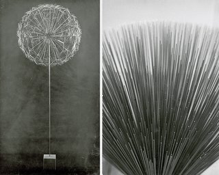 Knoll Inspiration: Harry Bertoia Centennial Celebration - Photo 5 of 5 - Black & white photographs of Harry Bertoia's Sonambient sculptures.