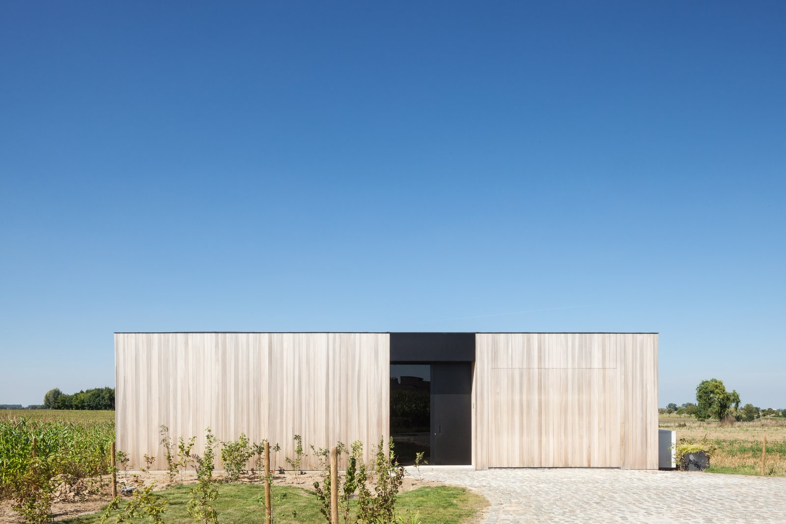 Photo 3 of 14 in Defying traditionalism: concrete bungalow inserted in a rural Belgian landscape