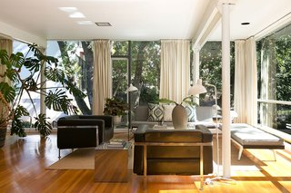 An Amazing Tree-Covered Glass House For Sale in the Berkeley Hills - Photo 5 of 20 - With plants both inside and out, the house feels immersed in nature.