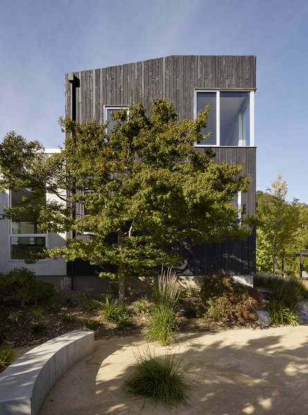 Photo 4 of Shou Sugi Ban House modern home