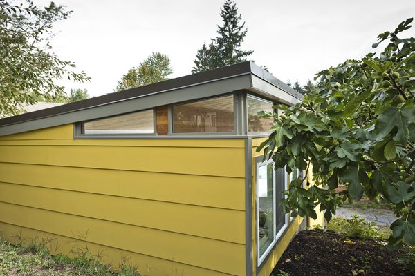 Photo 9 of Modern-Shed Man Cave and Office modern home