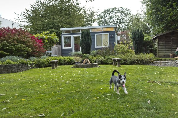 Photo  of Modern-Shed He-Shed, She-Shed modern home
