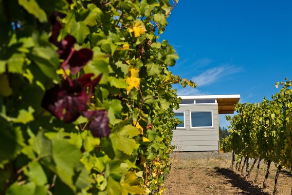 Photo 3 of Modern-Shed Vineyard Office modern home