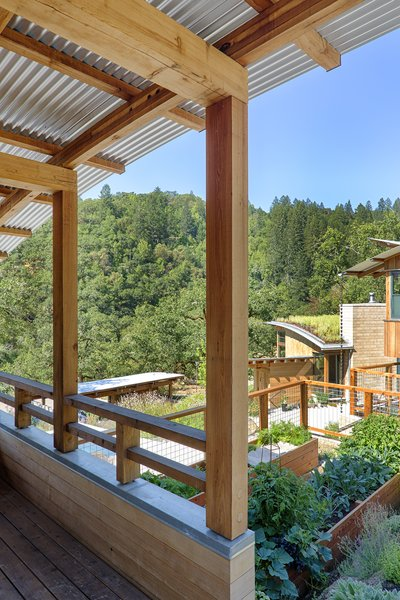 Above the poolhouse, a studio for art and essential oils opens out onto edible gardens.  Photo 9 of Healdsburg Family House modern home