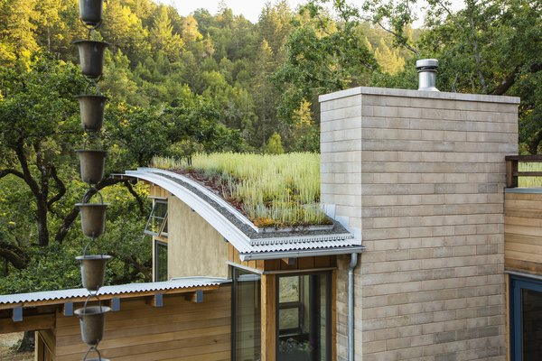 The highly visible living room roof is planted with sedums, blending into the landscape - other roofs are topped by gently curving corrugated metal. Photo 5 of Healdsburg Family House modern home