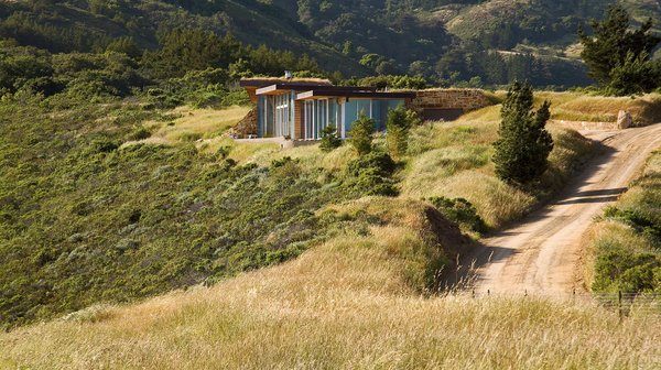 Native grasses such as red fescue and California oat dot the landscape surrounding the house.