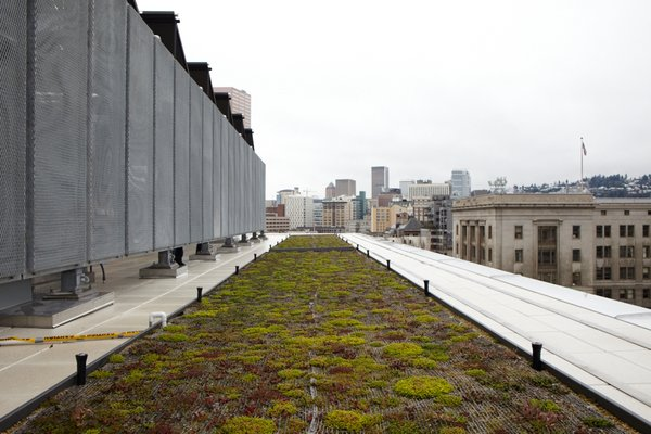 A living roof is among the project's many green features.