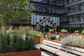 3 New York City Residential Projects That Feature DIY Urban Gardens - Photo 5 of 7 - With over 50 varieties of produce, the plot includes a greenhouse and picnic tables for communal dining.