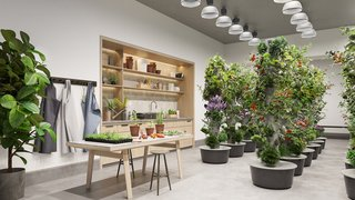3 New York City Residential Projects That Feature DIY Urban Gardens - Photo 7 of 7 - Along with art and music recording studios, Waterline Square will offer residents an indoor gardening studio—in addition to its outdoor version.