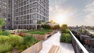 3 New York City Residential Projects That Feature DIY Urban Gardens - Photo 3 of 7 - Shown here is a view of the building's rooftop terrace.