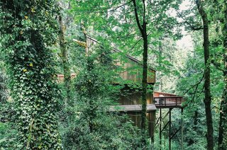 This Tree House For Rent Near Downtown Portland Doubles As an Art Platform - Photo 13 of 14 -