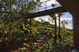 A Breezy Hawaiian Residence by Olson Kundig Hits the Market at $6.95M - Photo 13 of 14 - Kukui'ula features an Upcountry Farm, a 50-acre community farm equipped with a staff of farmers who help residents and guests of the property harvest seasonal fruits and vegetables on site. Kukui'ula gives guests and homeowners the opportunity to explore the sacred Hawaiian culinary traditions of living off the land.